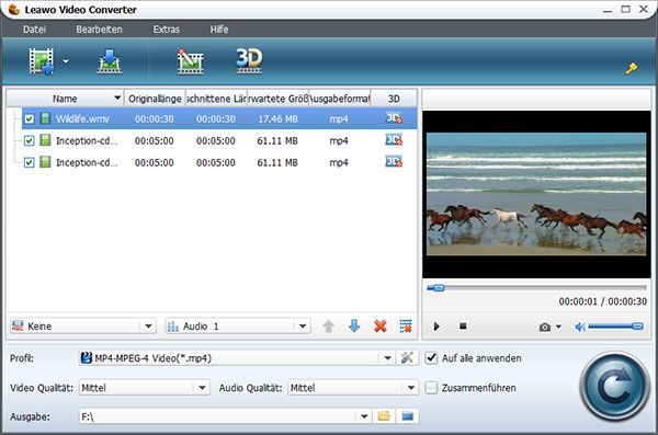 programm umwandeln videodateien: